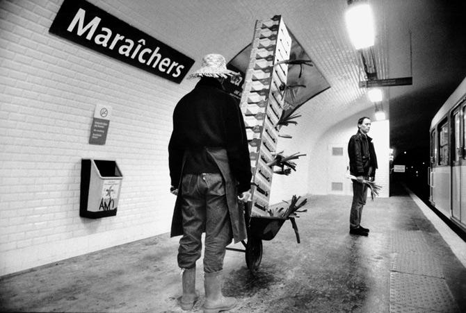 Metropolisson-Janol-Apin-Metro-Maraichers