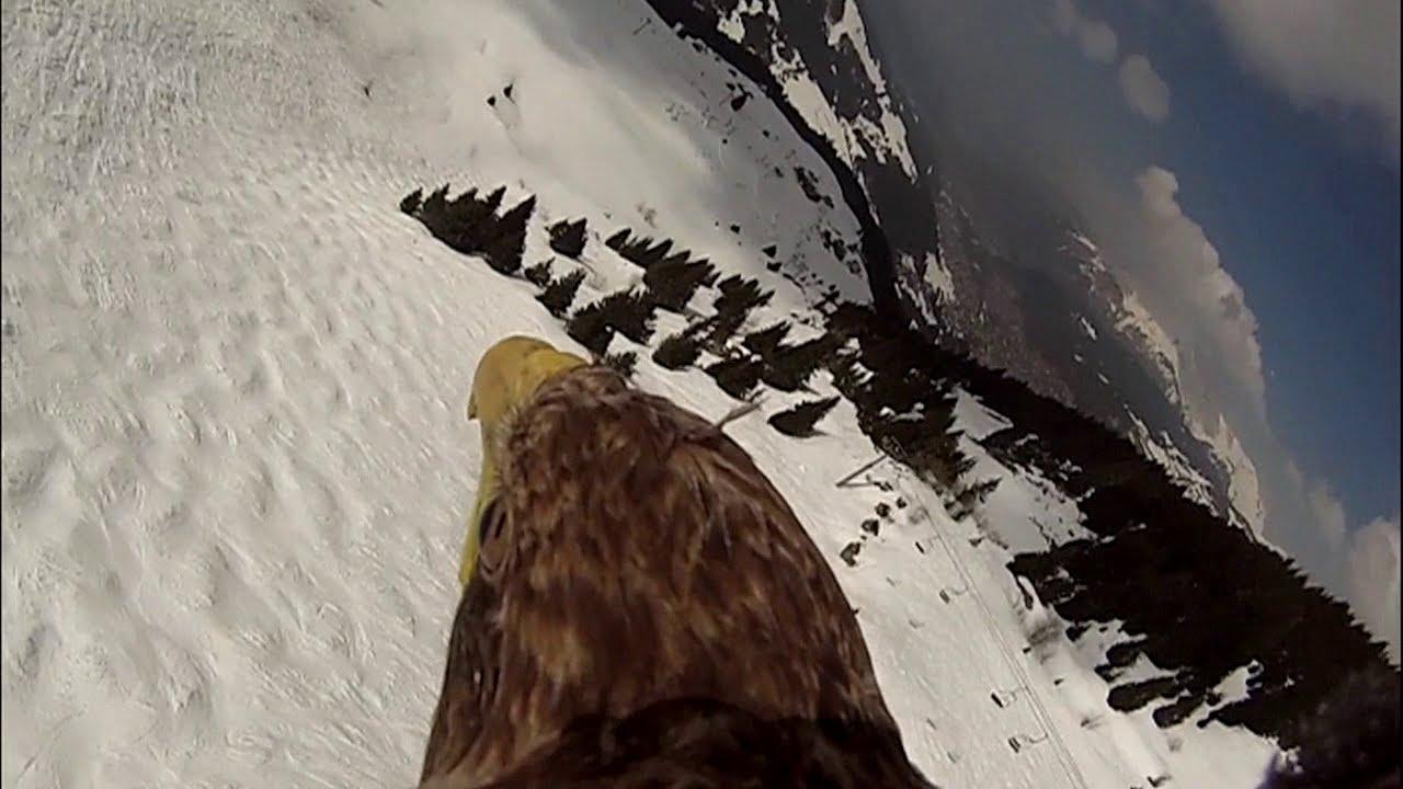 Французские Альпы с точки зрения орла