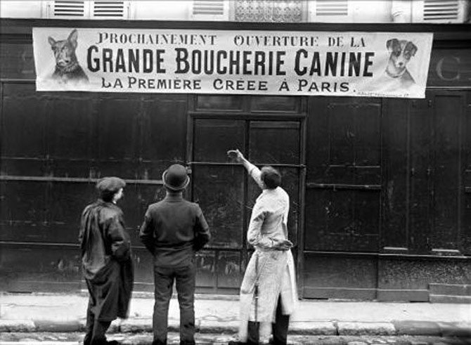 zoo-Grande_Boucherie_Canine_a_Paris