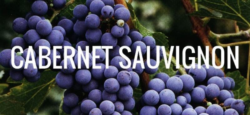 cabernet-sauvignon1